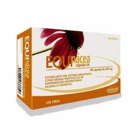 Equinacea 250 Mg 48 Capsulas Homeosor